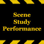 Scene-Study-Performance